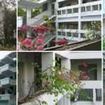 The Future Foundation School Kolkata